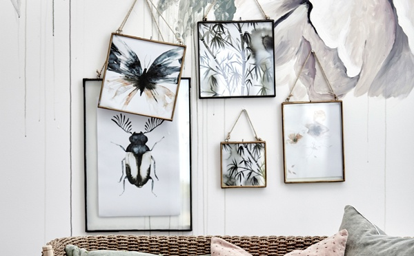 picture frames with photos of leaves and bugs