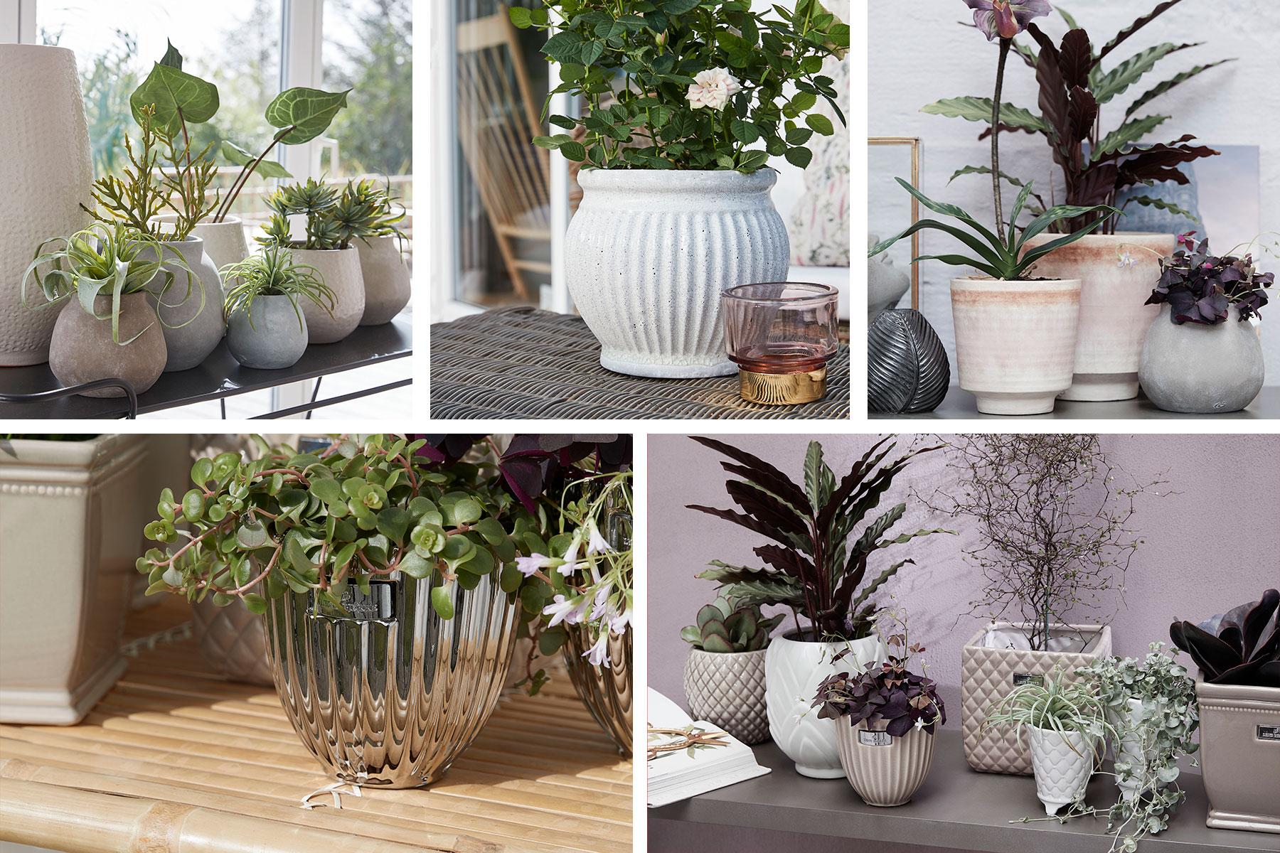 Scandinavian home decor wholesaler of flower pots - Lene Bjerre