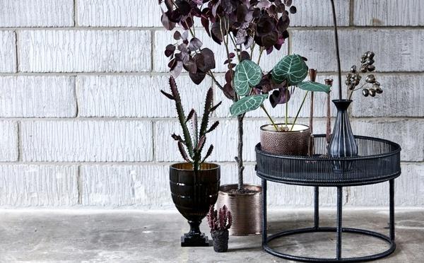 Bambustablett mit Kunstpflanzen und Blumentöpfen