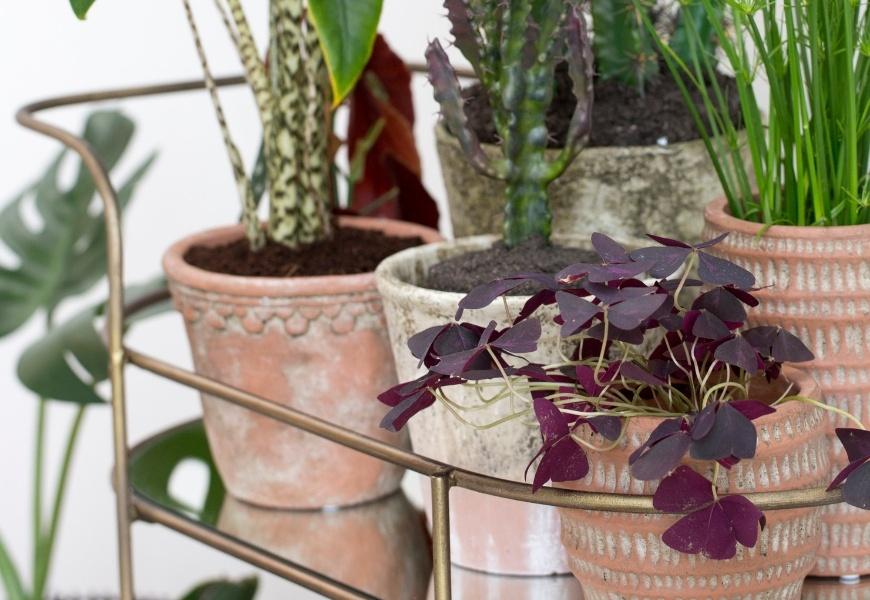 Lene Bjerre Kunstblumen und -pflanzen in rustikalen Blumentöpfen
