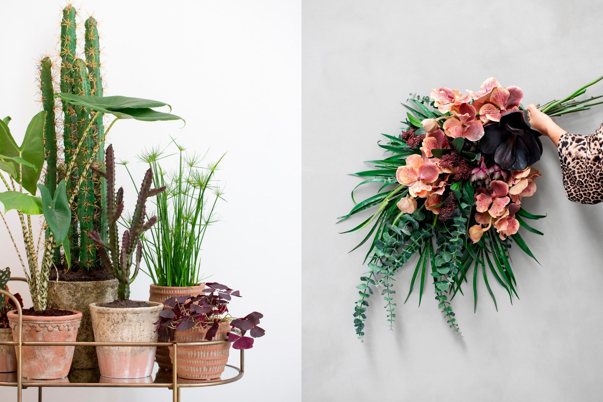 Flowers_1_1920x1280px
