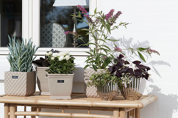 Handcrafted artificial flowers & plants - Lene Bjerre