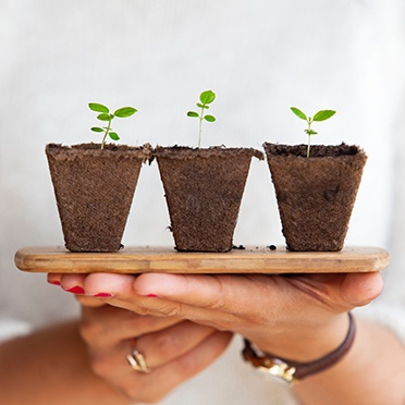 three small plant sprouts on a tray held by to female hands